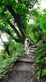 宜蘭礁溪抹茶山:65480.jpg