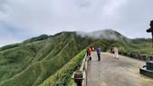 宜蘭礁溪抹茶山:65468.jpg