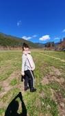 武陵農場:20200205武陵農場_200209_0171.jpg