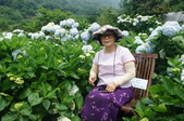 帶媽媽去看繡球花:DSC08695.JPG