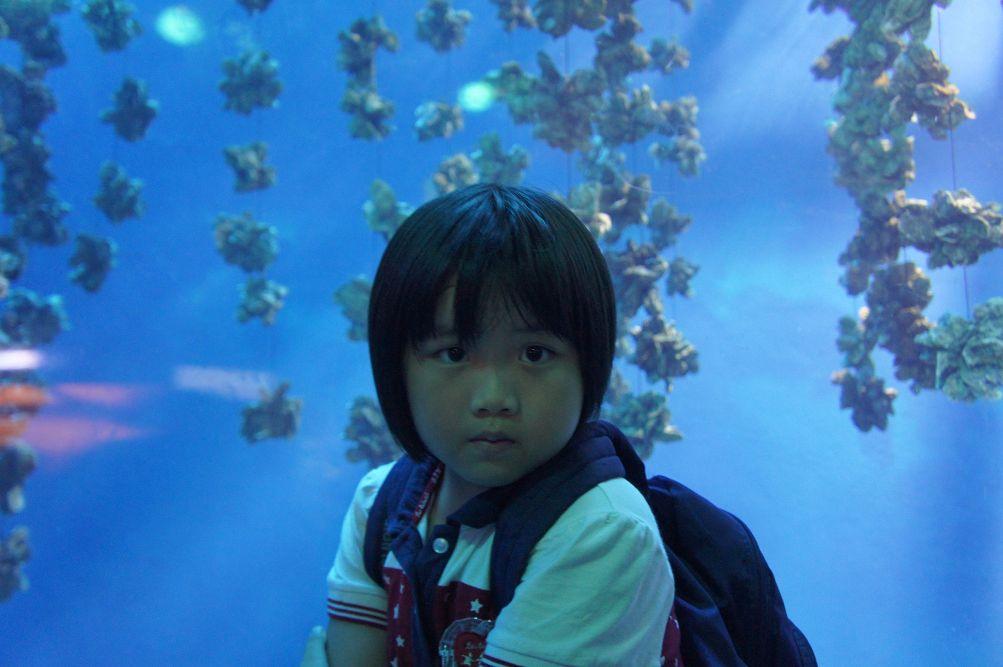 2013暑假屏東海生館:DSC03212.jpg