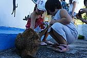 100922三母女猴洞之旅:DSC00293-1.jpg