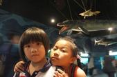 2013暑假屏東海生館:DSC03341.jpg