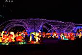 2013台灣燈會在新竹縣:DSC_5799.jpg
