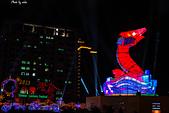 2013台灣燈會在新竹縣:DSC_5794.jpg