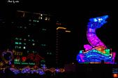2013台灣燈會在新竹縣:DSC_5796.jpg