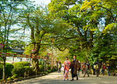 2017日本永平寺與兼六園:DSC_4012.jpg