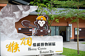 猴硐:DSC_4205.jpg