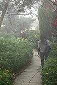 2007山上人家:花園小徑