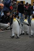 2005夏季北海道03Jul-07Jul:企鵝寶貝遊行