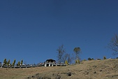 2006春節之清靜農場:青青草原