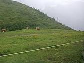 2009.07.05少女峰:山腰綠草如茵.JPG