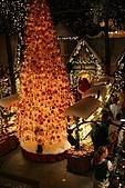 2009.07.10羅森堡:聖誕小屋3.JPG