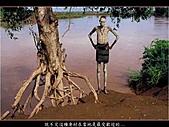 人體藝術與自然結合:原始部落人與自然結合藝術003.JPG
