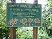 拉拉山巨木區:20100719拉拉山s003.jpg