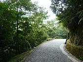拉拉山巨木區:20100719拉拉山s004.jpg