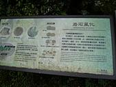 拉拉山巨木區:20100719拉拉山s007.jpg