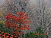 061022-29Japan:日本仙台 115.jpg
