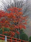 061022-29Japan:日本仙台 116.jpg