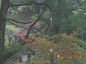 061022-29Japan:日本仙台 141.jpg
