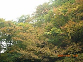 061022-29Japan:日本仙台 273.jpg
