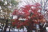 061022-29Japan:File02651.jpg