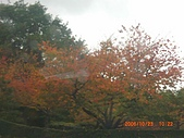 061022-29Japan:日本仙台 068.jpg