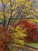 061022-29Japan:日本仙台 120.jpg