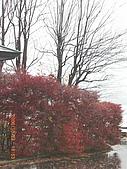 061022-29Japan:日本仙台 124.jpg