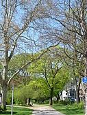 20110408-17德盧比荷(景):P1030108.jpg