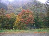 061022-29Japan:日本仙台 251.jpg