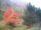 061022-29Japan:日本仙台 252.jpg