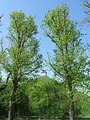 20110408-17德盧比荷(景):P1030224.jpg