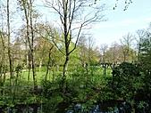 20110408-17德盧比荷(景):P1030442.jpg