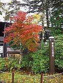 061022-29Japan:日本仙台 137.jpg