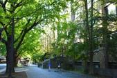 東京大學:東京大學 (8).jpg