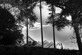 黑與白的健行:爬山黑與白 (2).jpg