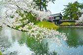 弘前公園(2):弘前公園2 (8).jpg