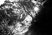 黑與白的健行:爬山黑與白 (6).jpg