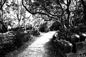黑與白的健行:爬山黑與白 (21).jpg