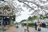弘前公園(2):弘前公園2 (5).jpg