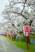 弘前公園(2):弘前公園2 (7).jpg