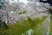 弘前公園(2):弘前公園2 (17).jpg