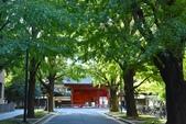 東京大學:東京大學 (7).jpg