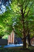 東京大學:東京大學 (20).jpg