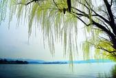 江南遊&杭州西湖:杭州西子湖 (11).jpg