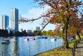 上野公園&不忍池:不忍池 (5).jpg