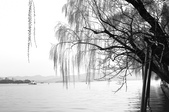 江南遊&杭州西湖:杭州西子湖 (12).jpg