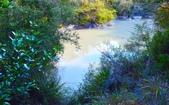 紐西蘭  毛利村:毛利村 (21).jpg