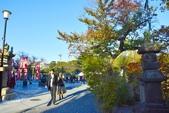 上野恩賜公園:上野公園 (1).jpg